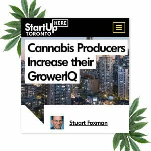 StartUp Here Profile: Cannabis Producers Increase their GrowerIQ